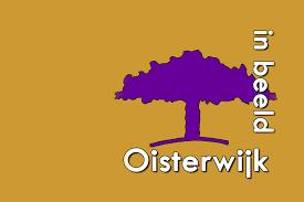 logo Oisterwijk in Beeld